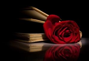 Rose_in_book